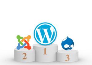 wordpress best cms themes
